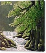 Oregon Creek Canvas Print