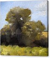 Oregon Field Study Canvas Print