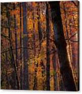 Oregon Twilight Canvas Print