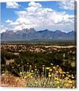 Organ Mountain Splendor Canvas Print