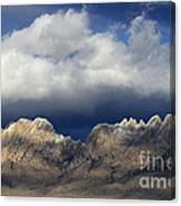 Organ Mountains New Mexico Canvas Print