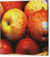 Organic Apples Canvas Print