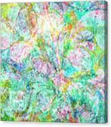 Organic Colors By Jan Marvin Canvas Print