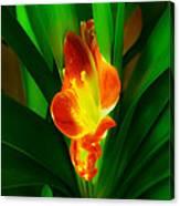 Organic Glowing Canvas Print