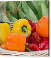 Organic Sweet Bell Peppers Canvas Print