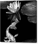 Oriental Koi Fish And Water Lily Flower Black And White Canvas Print