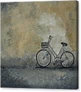 I've Seen Darker Days Canvas Print
