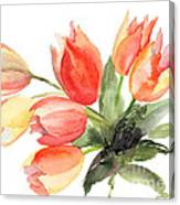 Original Tulips Flowers Canvas Print
