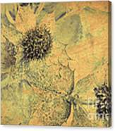 Ornamental Thistle Flower Canvas Print