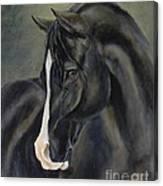 Ossie Canvas Print