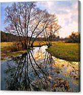Ossow - Dluga River Canvas Print