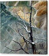 Other Worlds.. Canvas Print