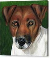 Otis Jack Russell Terrier Canvas Print