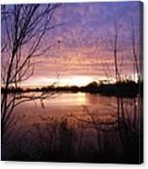 Ottawa River Sunrise Canvas Print