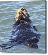 Otter 2 Canvas Print