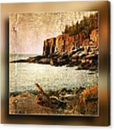 Otter Cliffs Acadia National Park Canvas Print