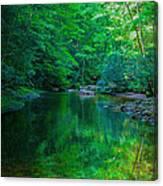 Otter Creek Reflection  Canvas Print