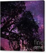 Our Amazing World Canvas Print