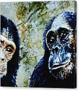 Our Closest Relatives Canvas Print