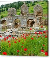 Our Entry Into Ephesus And Its Baths-turkey Canvas Print
