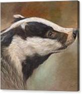 Our Friend The Badger Canvas Print