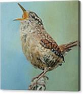 Our Little Wren Canvas Print