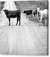 Our Way Or The Highway Bw Canvas Print