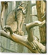 Out Of Reach - Lynx Canvas Print