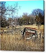 Out To Pasture 3 Canvas Print