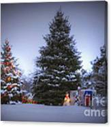 Outdoor Christmas Tree Canvas Print