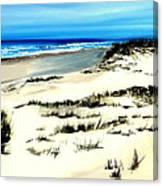 Outer Banks Sand Dunes Beach Ocean Canvas Print