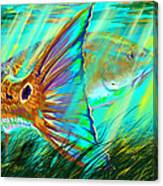 Over The Grass  Canvas Print
