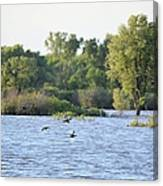 Over The Marsh Canvas Print