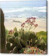 Overlooking San Elijo Beach Canvas Print