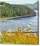 Overlooking the Harbor Canvas Print