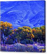 Owens Valley Fall Colors  Canvas Print