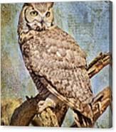 Owl On A Tree Canvas Print