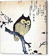 Owl On Tree Branch Canvas Print