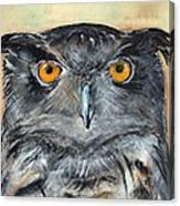 Owl Series - Owl 1 Canvas Print