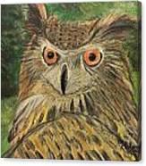 Owl With Orange Eyes Canvas Print