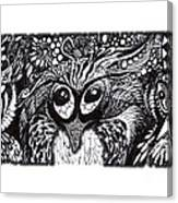 Owls Eyes Canvas Print
