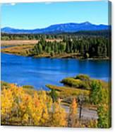 Oxbow Bend, Grand Teton National Park Canvas Print