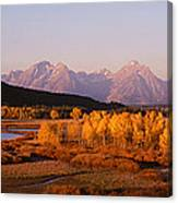 Oxbow Bend Grand Teton National Park Wy Canvas Print