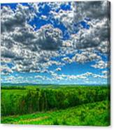 Ozark Pasture #3 Canvas Print