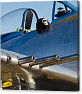 P 41 Fighter Canvas Print