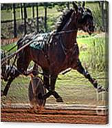 Pacer Canvas Print