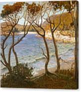 Pacific Beaches Canvas Print