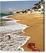 Pacific Coast Of Mexico Canvas Print