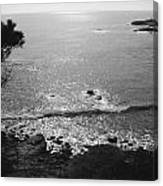 Pacific Dawn Canvas Print