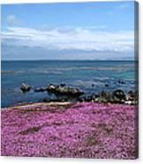 Pacific Grove California Canvas Print